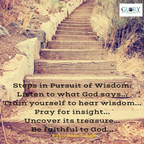 Steps in Pursuit of Wisdom