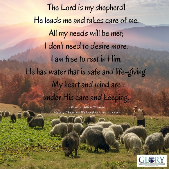 Let God Shepherd You!